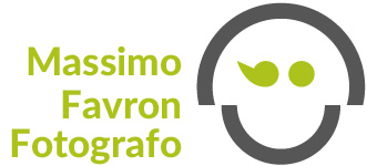 favron logo contact